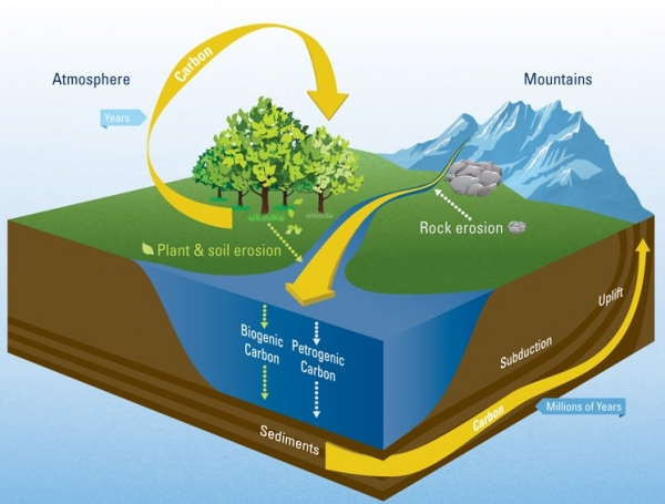 How Rivers Regulate Global Carbon Cycle - GreenArea.me